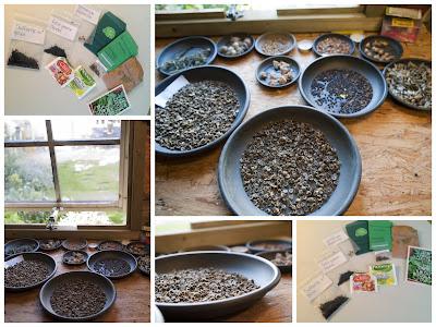 Zadenruil Seedswap
