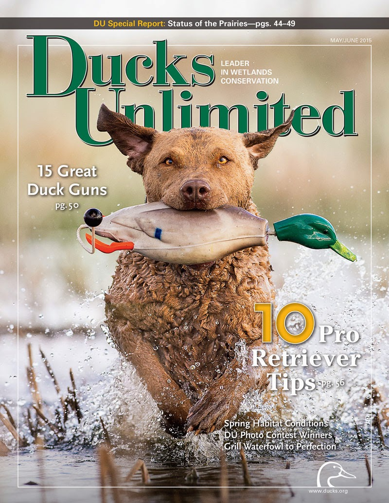 Proud Member of Ducks Unlimited