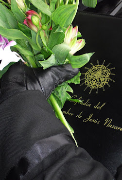 """Fotografía Presentada Para el Concurso """"Momentos"""" 2011"""