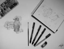 Projeto Eu Não Sei Desenhar