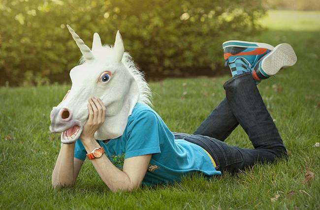 unicorn aneimal national scotia