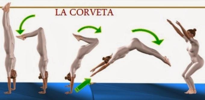 Marcando el paso habilidades gimn sticas rondada for Definicion de gimnasia