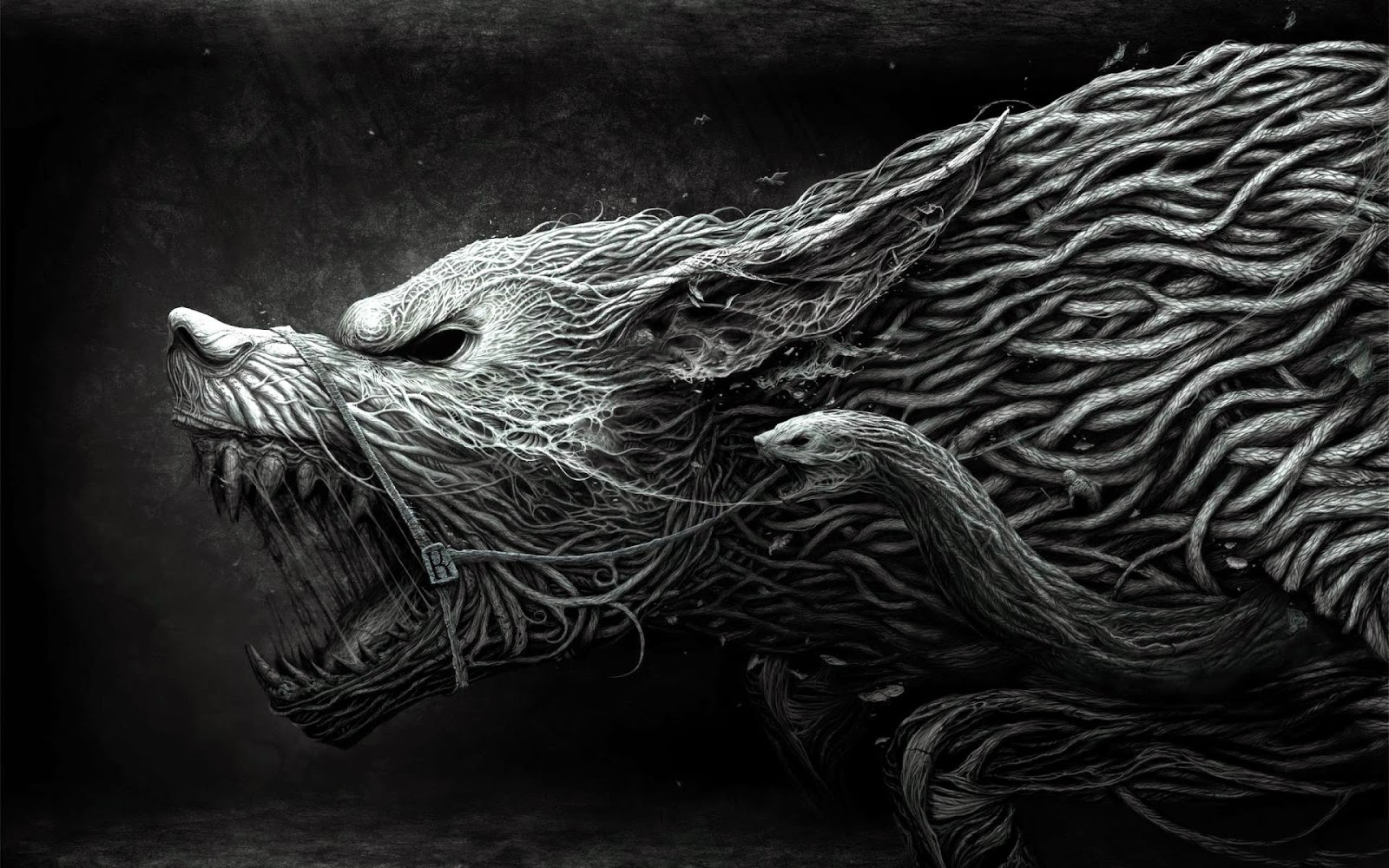 werewolf, full moon, beast, mythology, werewolf mythology, werewolf origins