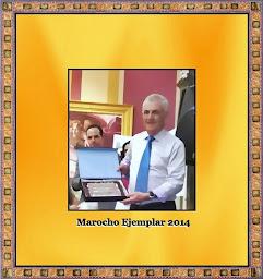 Emigrante ejemplar 2014