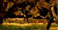 imagenes de dragones y  guerra de dragones