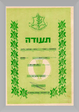Israel Defense Forces Krav Maga Instructor Certificate