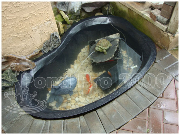 Pond repair how to build and maintain a proper koi pond for Koi pond repair