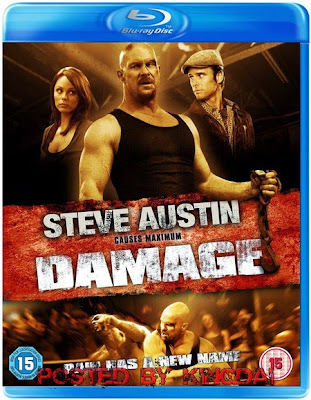 Damage 2009 Dual Audio [Hindi Eng] BRRip 720p 900mb