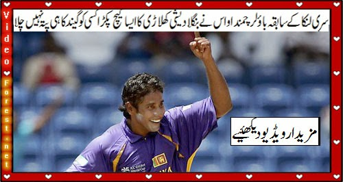 Best & Funny catch in Cricket History by Sri Lankan player Chaminda Vaas