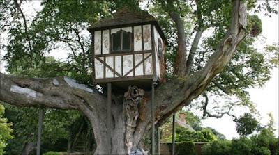 Beauty of Tree Houses