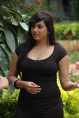 Namitha latest hot photo stills