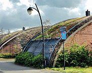 foto cover Groene daken nader beschouwd Over de effecten van begroeide daken in breed perspectief met de nadruk op de stedelijke waterhuishouding