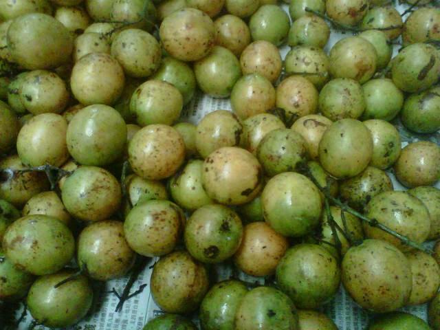 http://fruitszoom.blogspot.com/2015/03/gambar-buah-gandaria-3.html