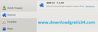 cc-idm-firefox-11