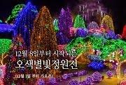 Lighting Festival of The Garden of Morning Calm