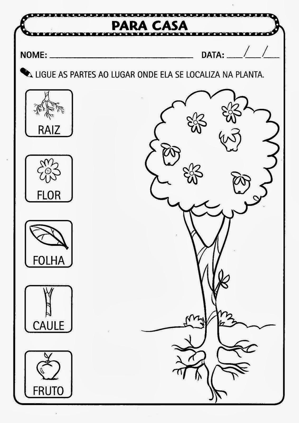 Well-known Educar X: Atividades meio ambiente educação infantil VA06