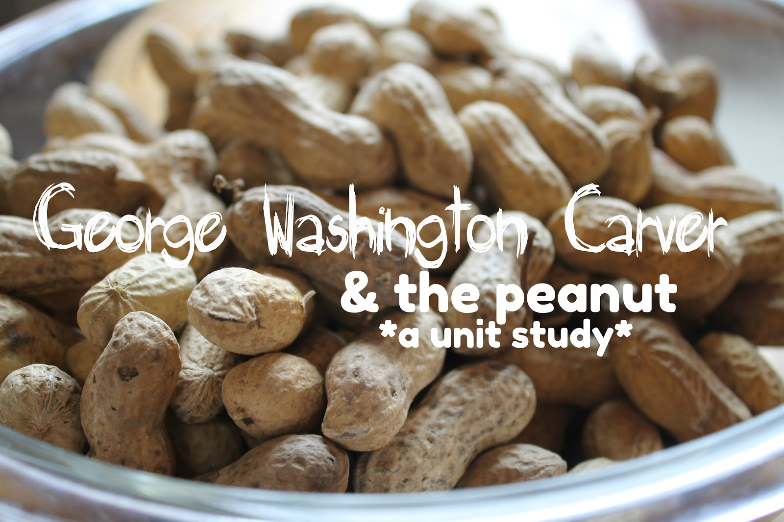 George washington carver crafts - George Washington Carver The Peanut A Unit Study