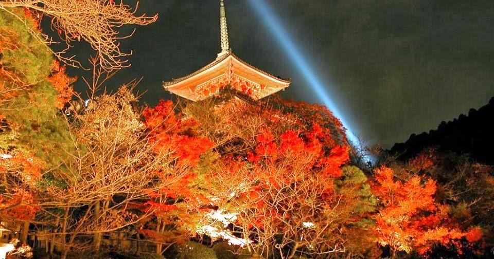 Mitesco wat een prachtig land in de herfst - Een hellend land ontwikkelen ...