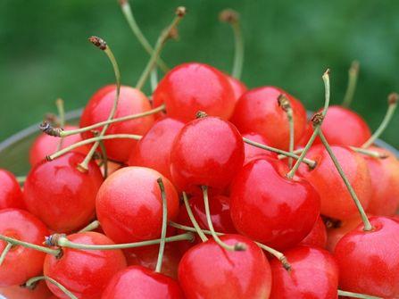 8 Buah-Buahan dengan Kandungan Antioksidan Terbanyak di Dunia: Ceri