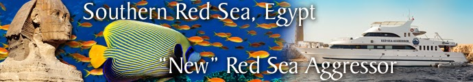 Red Sea 2015