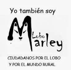 Yo soy Lobo Marley