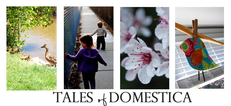 Tales of Domestica
