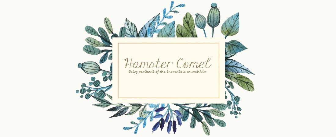 Hamster Comel