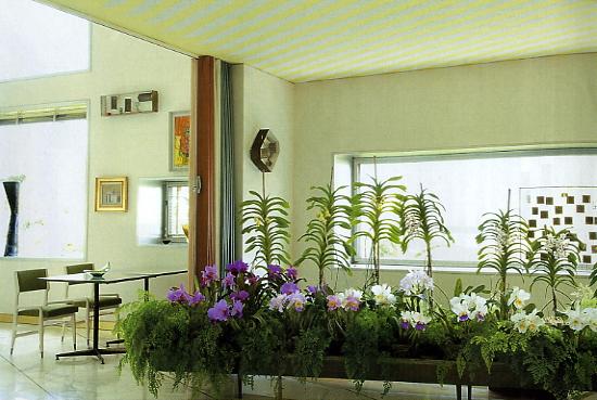 die wohngalerie villa planchart in venezuela gio ponti. Black Bedroom Furniture Sets. Home Design Ideas