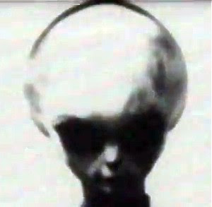 Alien Grey Extraterrestrial Zeta Reticuli
