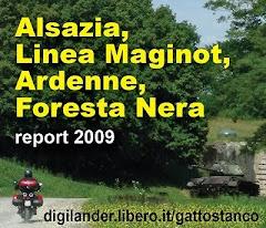 Alsazia, Linea Maginot, Ardenne, Foresta Nera...