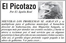 EL PICOTAZO