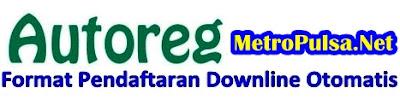 Cara Setting Format Pendaftaran Downline Otomatis (Autoreg) Server Pulsa Metro Reload Magetan