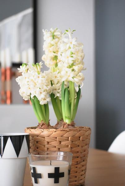 Fotos de como decorar una casa de campo decorar tu casa for Decorar su casa de campo