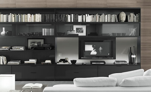 Modern Home Interior Design: Living room bookcase