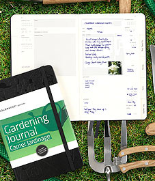 Fall gardening tips new house new home for Canadian gardening tips