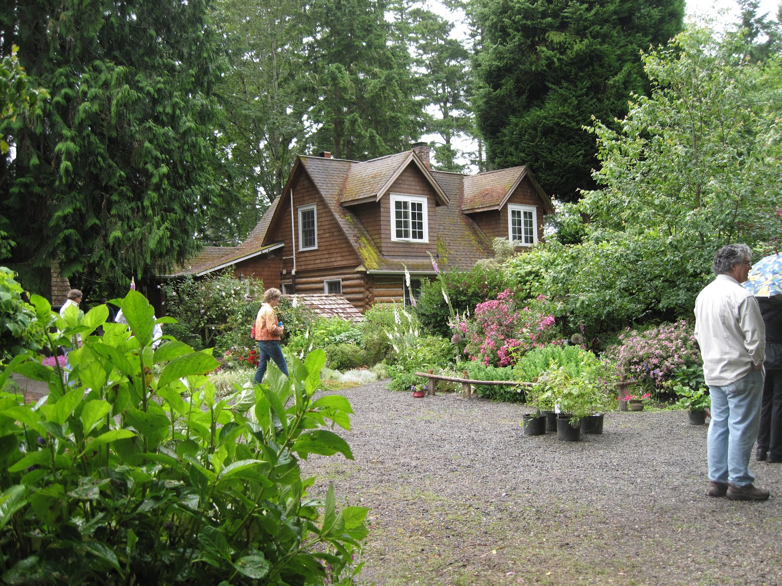 Little garden house - Finally At The End Of The Lane Are The Restored Log Cabin House And A Fantastic Little Garden Shed