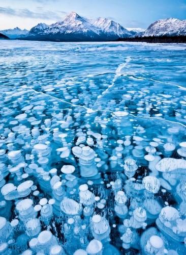 Burbujas congeladas en las Montañas Rocosas Canadienses