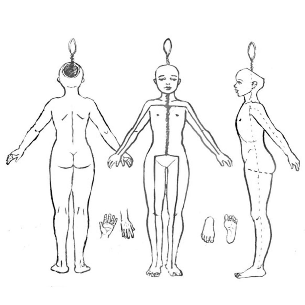 Modelando paso a paso: Plantillas cuerpo humano