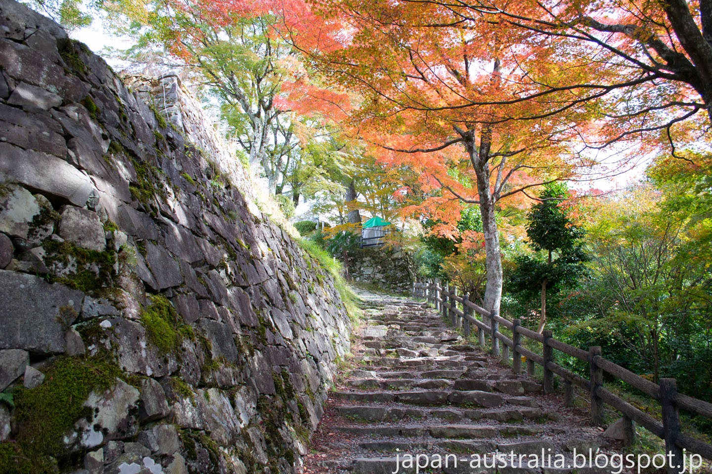 Autumn Colours at Gujo Hachiman Castle