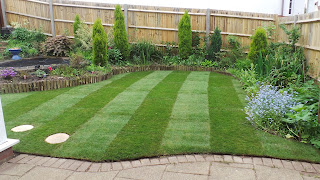 turfing, new turf, new lawn, new grass, crawley, dorking, horsham