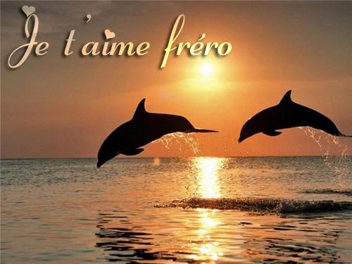 Bien-aimé Message d'amour pour son frère - Mot d'amour Phrase d'amour Lettre  PA91