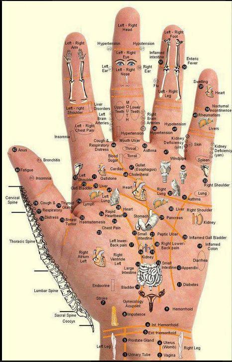 microssistema das mãos