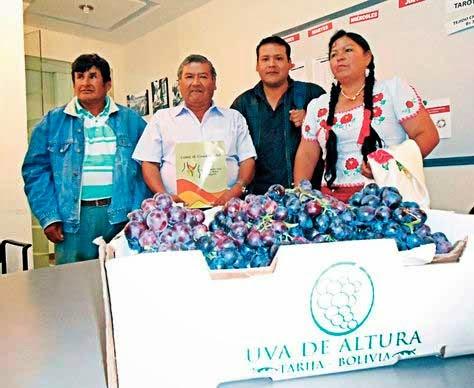 Los viticultores piden prohibir la importación de uva por 120 días