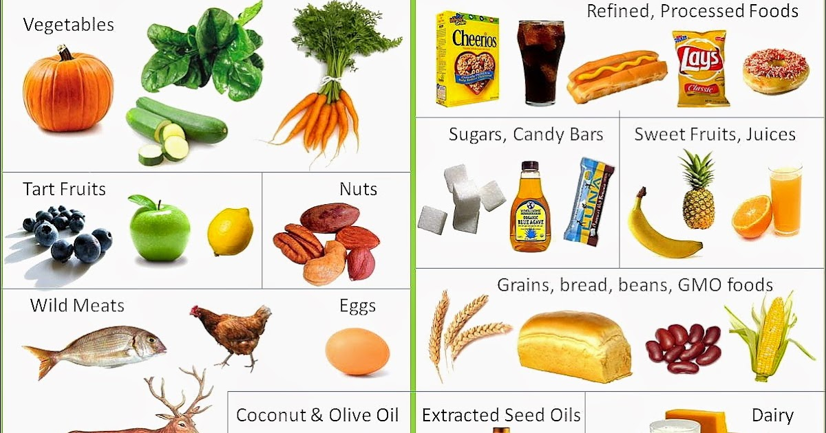 Panduan Menu Diet Paleo Untuk Mencapai Berat Badan Ideal ...