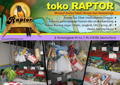 """baru dibuka """"TOKO RAPTOR"""" menjual aneka pakan burung dan asesorisnya"""