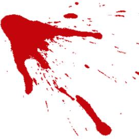 sangre de vida sangre de amor sangre de alegría sangre