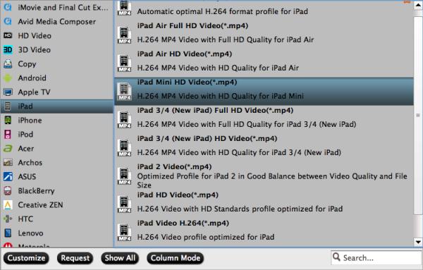 iPad Mini format