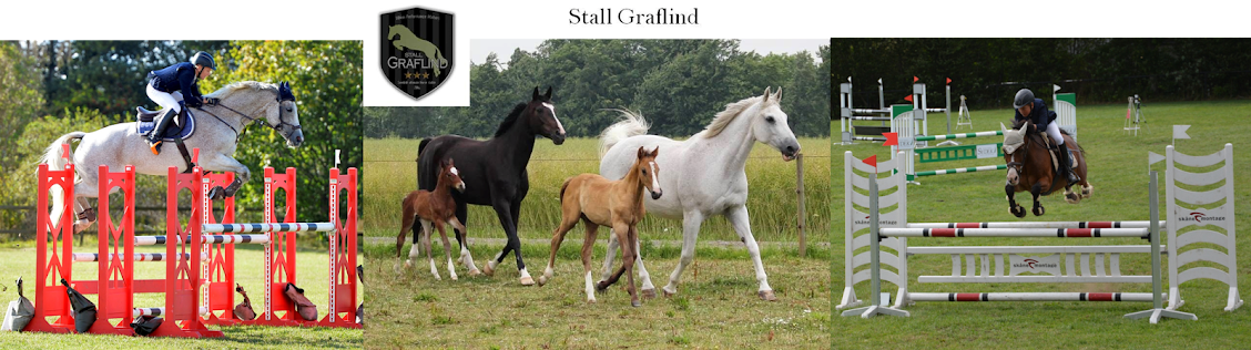 Stall Graflind