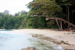 """Havelock Island"""