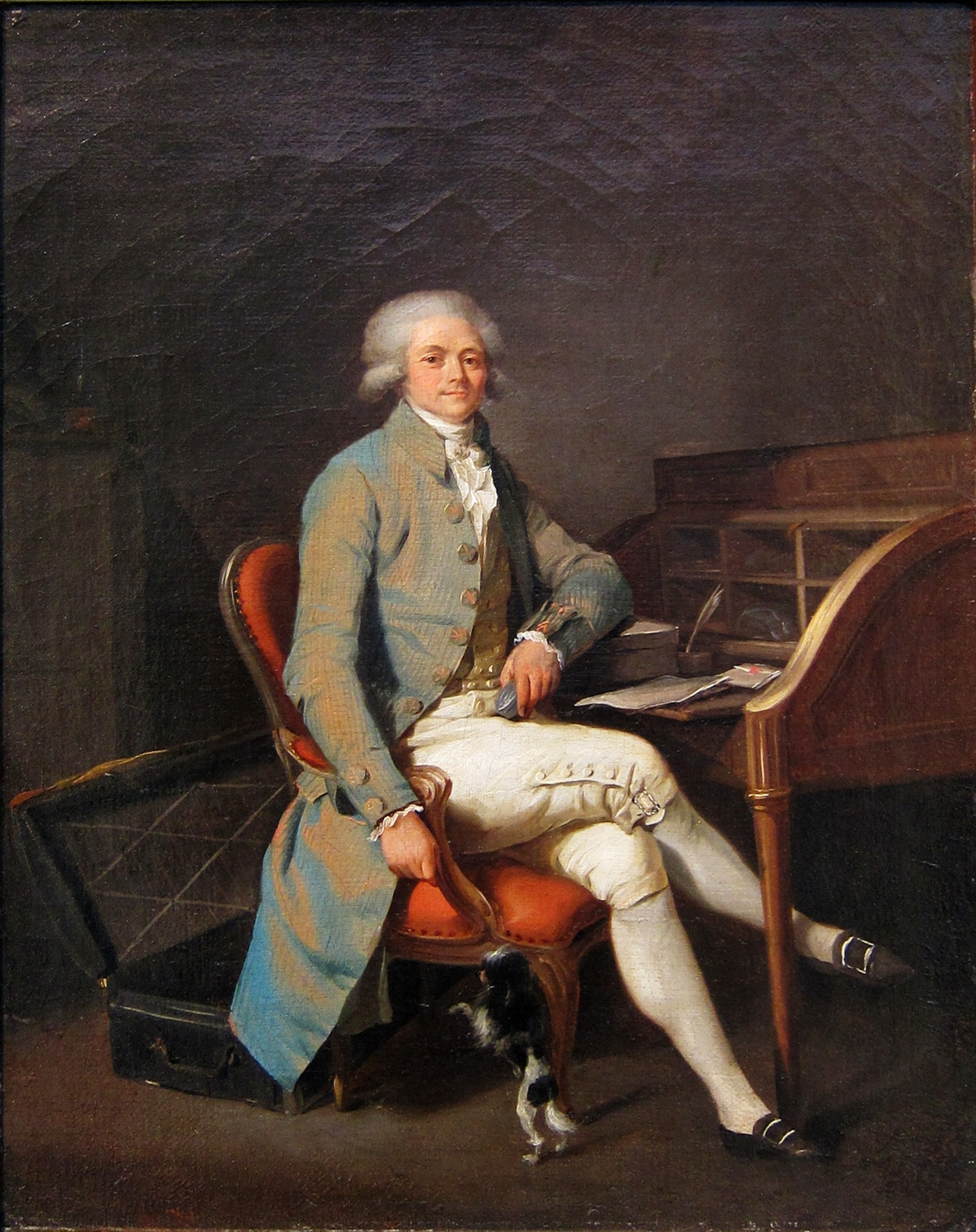 robespierre and the reign of terror Robespierre had made many enemies in his absolute rule, and they began attacking him through press and in the convention some blamed him for the excess use of terror, while others condemned him for being too moderate.